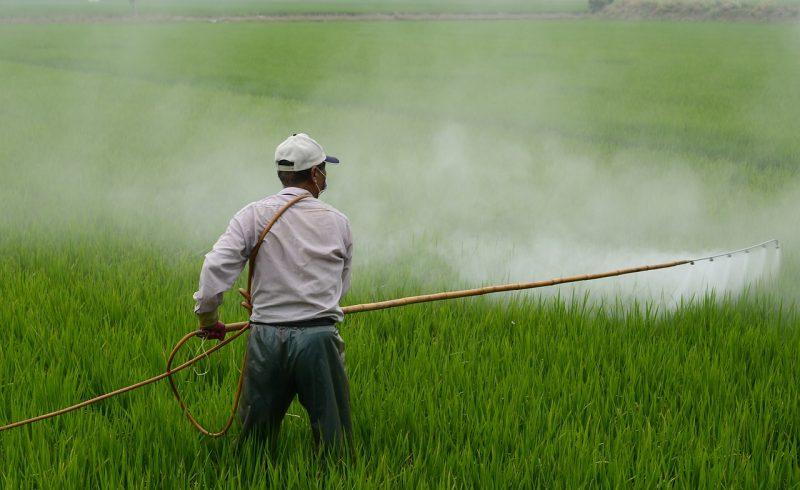 L'utilisation des pesticides a un impact néfaste sur la santé