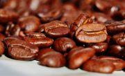 Le café commerce equitable permet d'obtenir la meilleure qualité tout en rémunérant correctement les producteurs