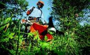 Bien déclarer travaux de jardinage permet d'accéder à des avantages fiscaux