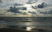 Le littoral français est présent au niveau de la mer du nord et des autres côtes françaises