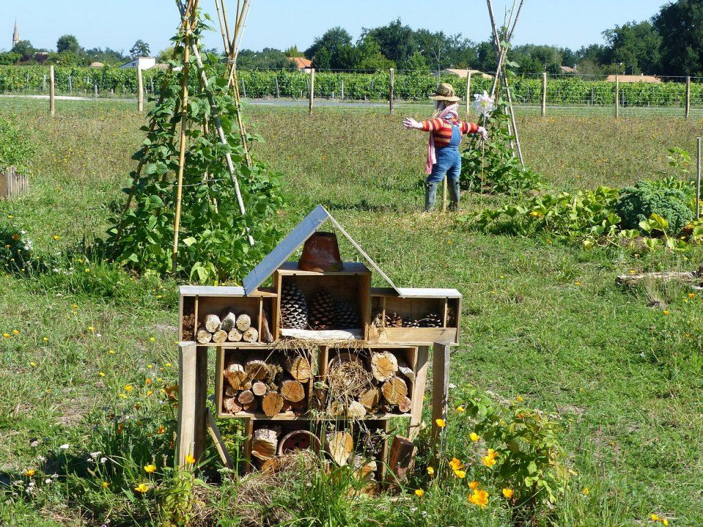 La permaculture permet d'atteindre une réelle harmonie avec la nature
